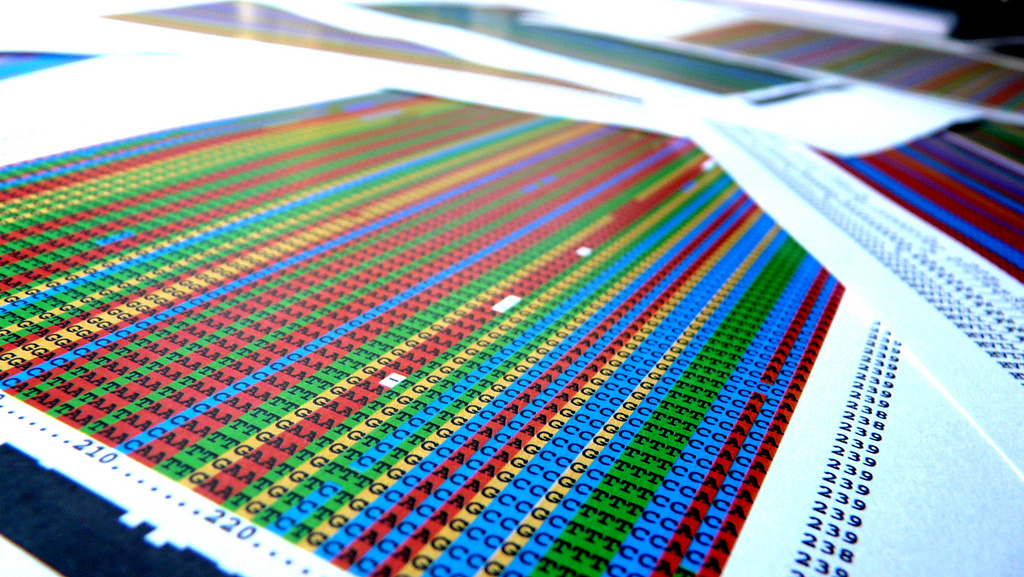 Multiple alignment of DNA sequences