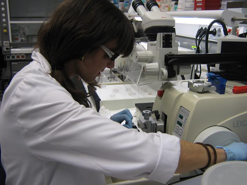 Lola Mulero at work in the Histology Unit. Image provided by the CRMB.