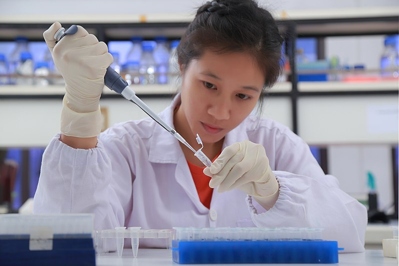 A researcher working in the lab